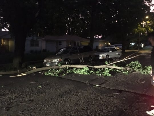 A large tree branch blocks the road near 33rd and Holly