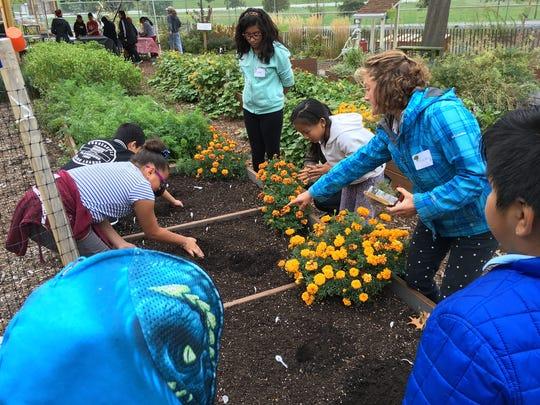 The GrowNYC teaching garden on Governor's Island.