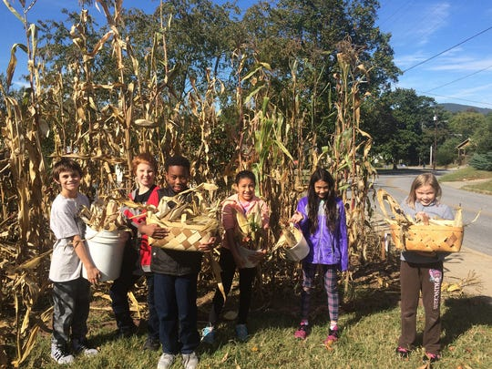 FEAST children harvesting corn in the fall.