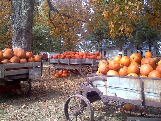 636427405922964623-Howell-s-Pumpkin-Patch.jpg