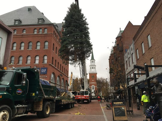 Church Street's new Christmas Tree is lifted into its stand on the top block of Church Street on Thursday, Nov. 16, 2017.