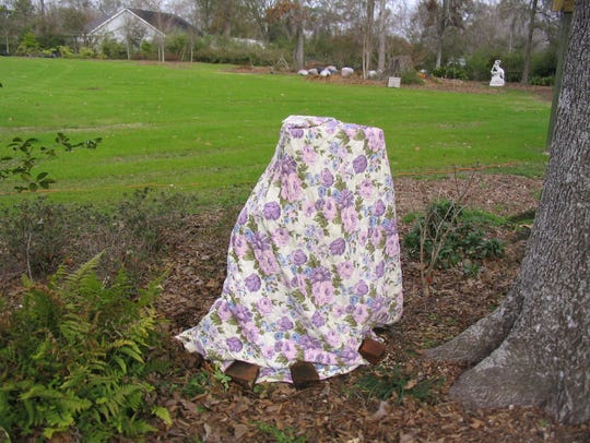 Covers intended to protect tender plants from freezing