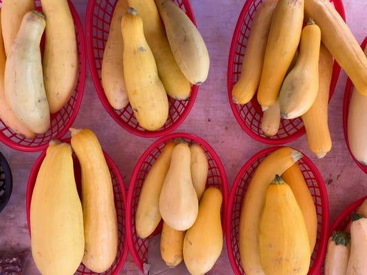 yellow-squash-IMG-0525.jpg