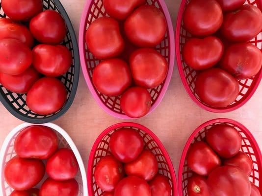 tomatoes-IMG-2332.jpg