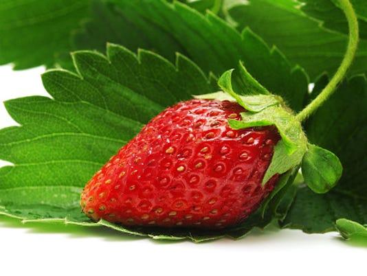 635911706480732105-strawberry-plants.jpg