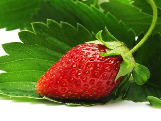 635911706480732105-strawberry-plants.jpg