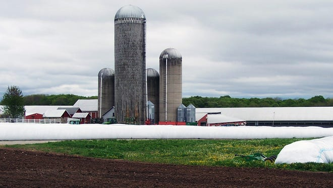 Vertical and horizontal feed storage frame the Habeck Homestead Farms farmstead, which will be the site for Manitowoc County's dairy breakfast on the farm on Sunday, June 11.