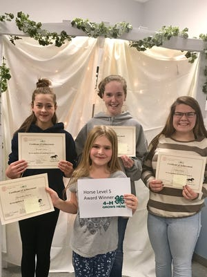 Members of the Broome County 4-H program were recognized for reaching Horse Level 5. Back row from left, Bridget Curran, Rachel Cederborg and Rhetta Mosher; in front, Samantha Herner.