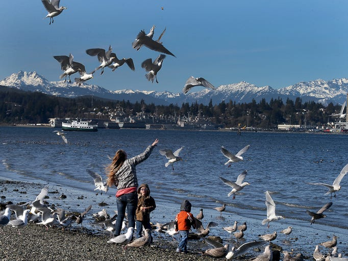 Dana Jeu, of Port Orchard, feeds the gulls with her