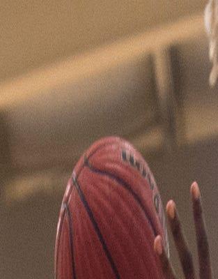 Boy's Basketball: Lanier vs. Greenville