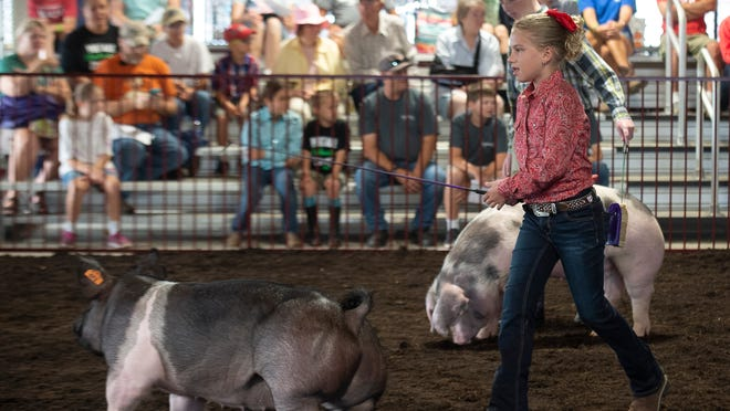 Kenley Shannon of Randolph shows her pig during the 2019 Portage County Randolph Fair.