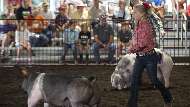 Kenley Shannon, 10, of Randolph, shows her second-place pig at the Portage County Randolph Fair in 2019.