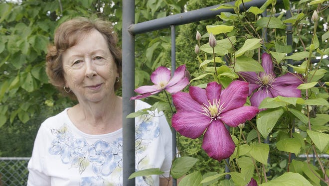 Ann Warne shows one of many clematis vines in her yard, which is featured in the Trailwood Garden Club's Flowers Are Forever Garden Walk.
