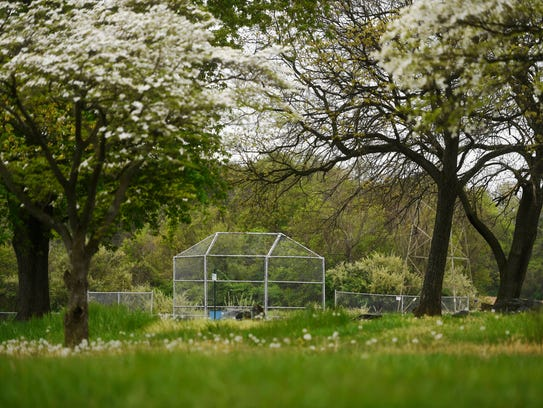 Holtwood Park has baseball fields, pavilions, parking