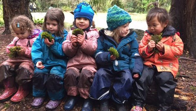 A group of young girls at the Fiddleheads Forest School incorporates moss into their play as a way of studying the forest.