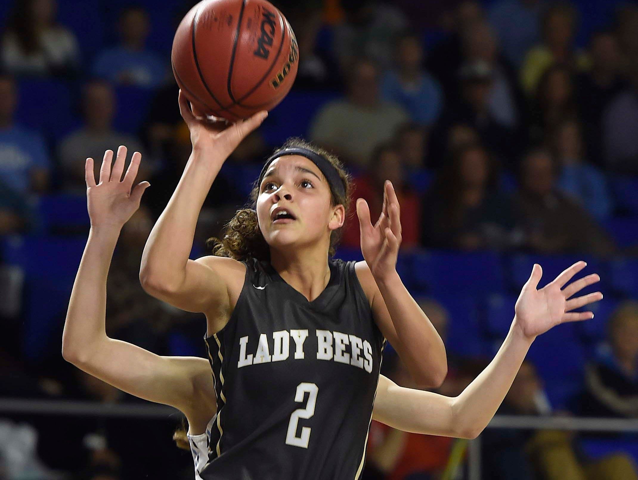 Levy, Upperman girls reach Class AA championship game | | USA Today ...