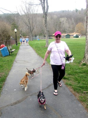 Pat Allen, of Pine City, and her three Chihuahuas enjoy some fresh air on their walk around Chapel Park in Pine City.  A new report from the American Lung Association says the Elmira-Corning area has some of the cleanest air in the country.
