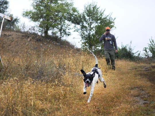 Hunter Joe Neumann goes pheasant hunting with his dog