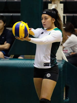 UOG's Kristi Stone concentrates as she prepares to serve against Pacific Islands University in their Guam Women's College Volleyball League game Thursday night, Feb. 2, 2017, at the UOG Calvo Field House. UOG won 3-1.