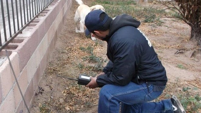 Meter reader Jesus Chacon has to keep an eye on a dog in the yard while reading a meter.