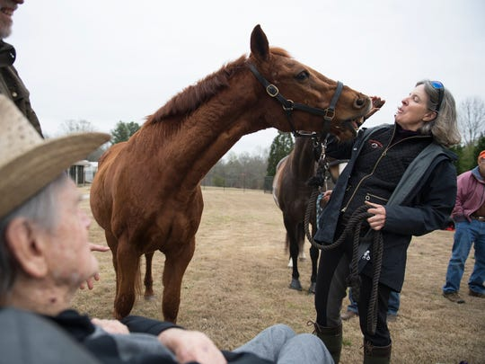 Dr. John B. Martin Jr. watches as Amy Nichols with Smiling Horse Farm interacts with her horse at Clemson Downs on Tuesday, March 25, 2018. Dr Martin, who is in hospice care, used to breed and train quarter horses.