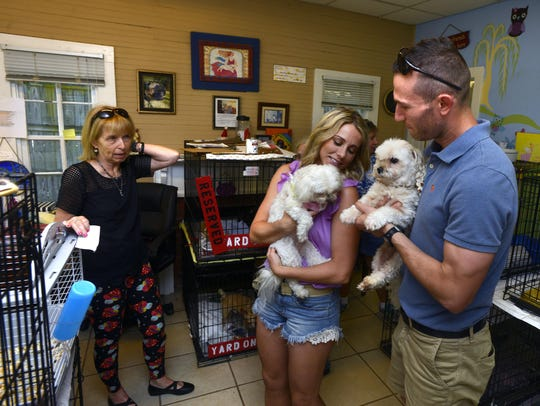Hotel For Dogs And Cats In Pensacola Has Vacancy For New Pet Owners