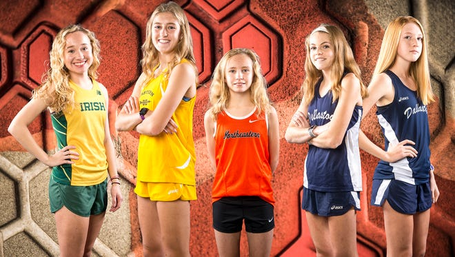 From left to right: York Catholic's Katie MacDougall, Eastern York's Maddie McLain, Northeastern's Margaret Carroll, Dallastown's Emily Schuler and Dallastown's Allie Myers.