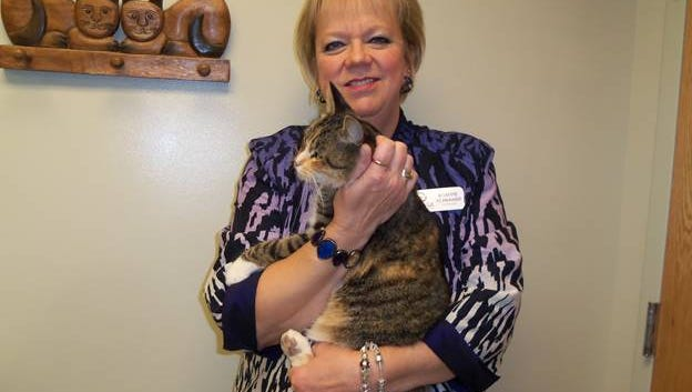 LACASA CEO Bobette Schrandt seek to reunited this cat with its family and the organization is accepting donations to cover the transportation costs.