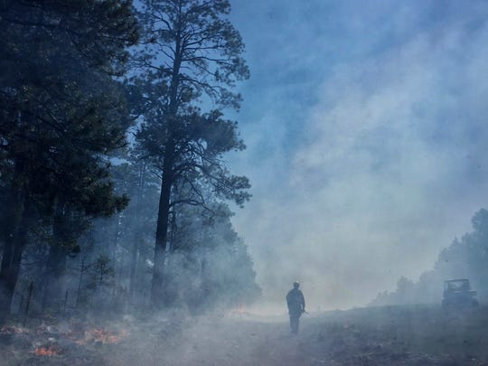 A holding crew member monitors the fire line of a prescribed