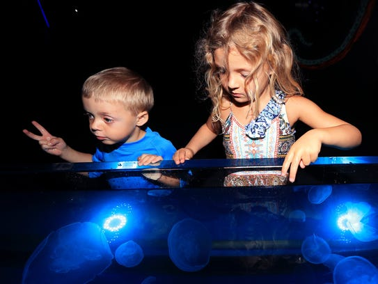 James Wilson (left), 3, and Grace Wilson, 5, attend