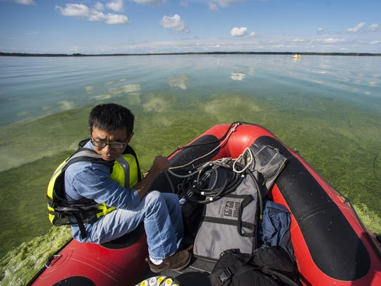 Yaoyang Xu, a Vermont EPSCoR post-doctoral associate, heads out through a bloom of cyanobacteria on Missisquoi Bay near Highgate Springs.