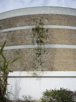 Vegetation, a sign of leakage or moisture, is seen growing on the side of a biofilter tower at the Oxnard wastewater treatment plant.