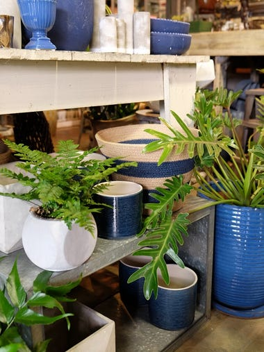 All Seasons Gardening & Brewing Supply Co. has a wide