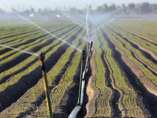 635792124290952077-east-valley-irrigation3