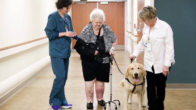 Physical therapist Hannah Miller assists patient Edlie Reviere in walking with therapy dog 'Cayenne' and his owner Terry Anseman at Our Lady of Lourdes.