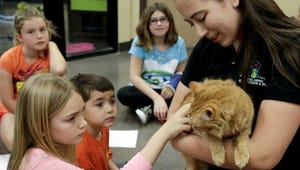 In this Monday, March 16, 2015 photo, Hannah Billings, 8, left, and Avery Ramos, 4, pet a cat held by humane educator Samantha Taubel at the Arizona Animal Welfare League & SPCA spring kids camp in Phoenix.