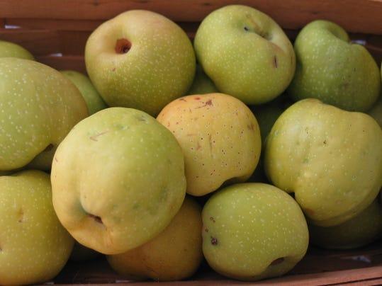 quincefruit.jpg