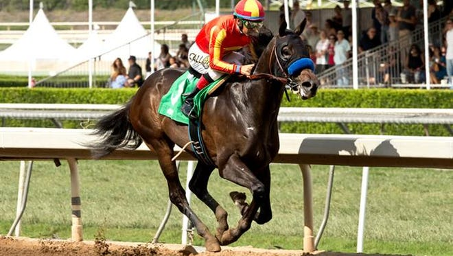 Three-time stakes winner Toews On Ice heads Monday's Smarty Jones Stakes at Oaklawn Park.