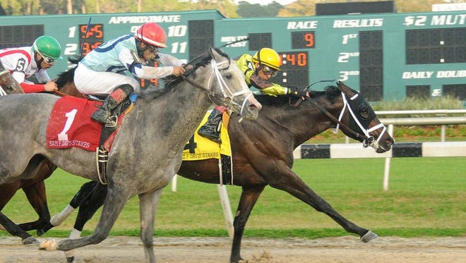 Vinceremos, wearing Twin Creeks' colors on the rail, holding off stablemate Harpoon in the Sam F. Davis.
