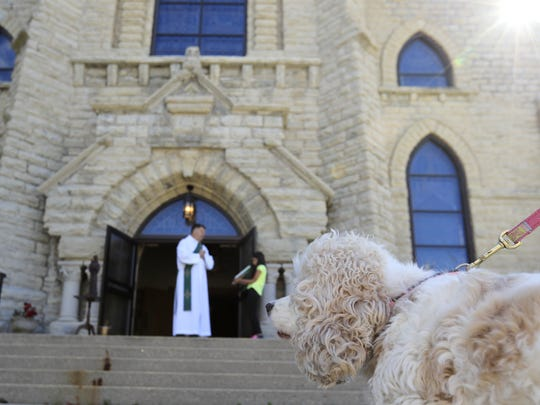 A dog looks on as Deacon Paul Umentum speaks at a pet
