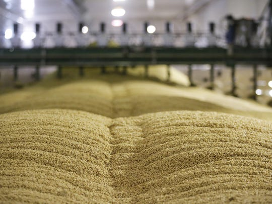 Malt in the germination room at Briess Malt Feb. 1