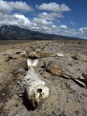 Images from the drought stricken Washoe Lake in June 2015.