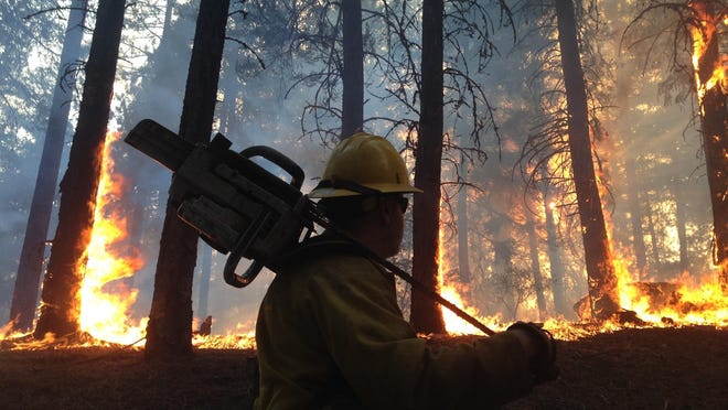 Guy Cooper carries a chainsaw through a burning forest in California.