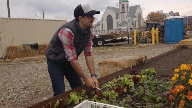 Pop star Jason Mraz harvest lettuce this afternoon at Plum Street Market Garden at MGM Grand Detroit.