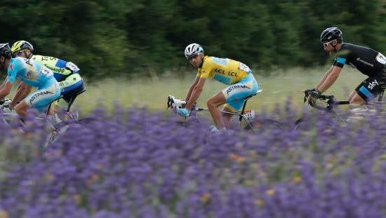 Italy's Vincenzo Nibali, wearing the overall leader's yellow jersey, looks at the photographer as he rides in the pack with Italy's Michele Scarponi, left, Ireland's Nicolas Roche, second left, and Austria's Bernhard Eisel, right, when passing a lavender field during the fifteenth stage of the Tour de France cycling race over 222 kilometers (137.9 miles) with start in Tallard and finish in Nimes, France, Sunday, July 20, 2014.