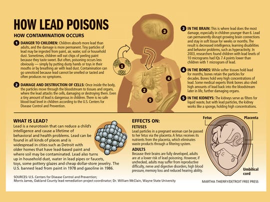 How lead poisons