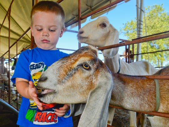 The International Goat Days Festival in Millington