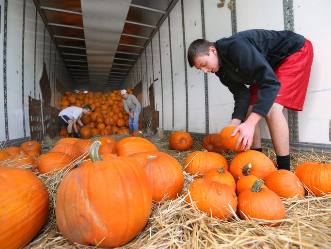 Tyler Witzig helps stack pumpkins at the end of the truck as Adam Woodward, left, and Troy Richards roll them his way at Fishers United Methodist Church in Fishers on Saturday, September 28, 2014. Over 2,900 pumpkins are for sale at the church through October 31 from 10 a.m. to 6 p.m. daily. Money raised from the sales benefits future mission trips for the Fishers UMC Fire & Water Student Ministries.