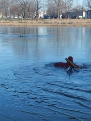 A rescuer heads out to a dog caught in the icy waters of Brick Pond in Elmira on Sunday.