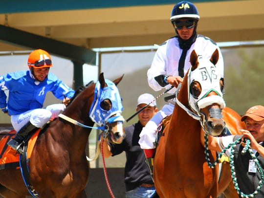 Jockeys mounted their horses and made their way out of the paddock to the starting gate during opening day of races at Ruidoso Downs Race Track on Saturday afternoon.